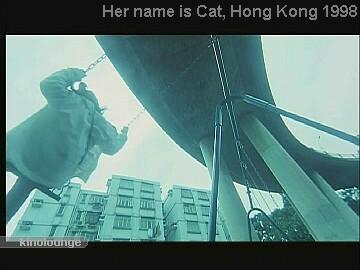 Cat 046