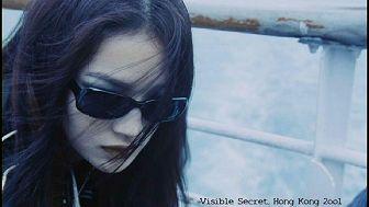 visible.secret02